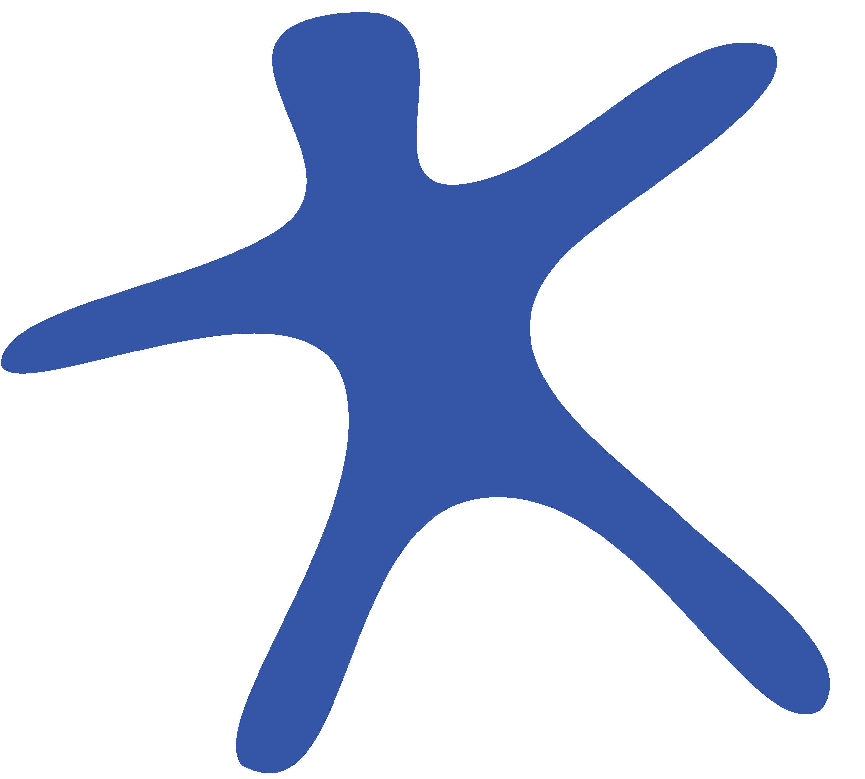 C3SC Watermark logo